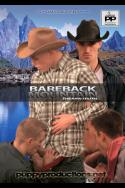 Bareback Mountain:  The Raw Truth